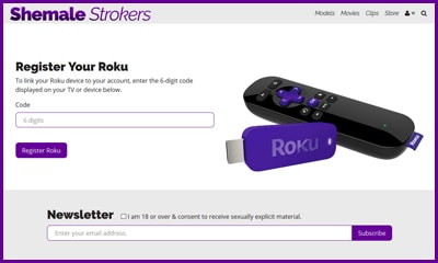 Enter Roku Device Linking Code Image